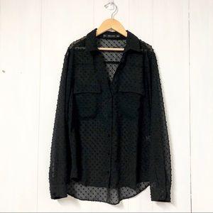 Zara Sheer Black Swiss Dot Long Sleeve Blouse